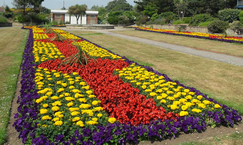 Marine Park Gardens