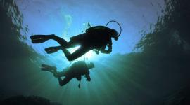 Dive sites off Bognor Regis